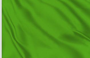 Bandiera Verde racing