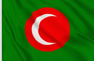 Bandiera Regno del Kurdistan
