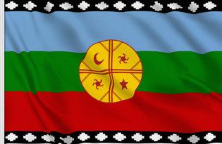 Bandiera Mapuche