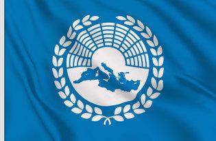Bandiera Assemblea Parlamentare Mediterraneo
