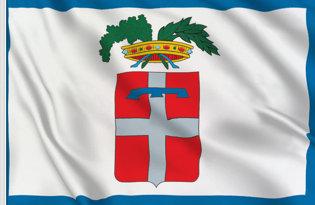 Bandiera Torino-Provincia