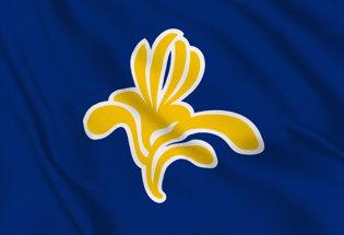 Bandiera Regione di Bruxelles Capitale