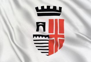 Bandiera Rimini