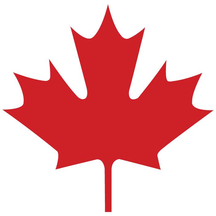 la foglia d'acero della bandiera canadese