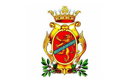 Bandiera di Frosinone
