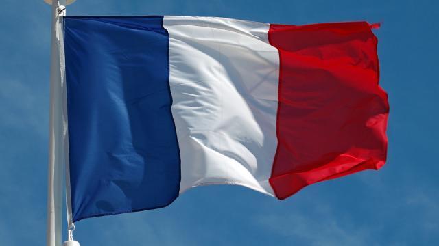 Bandiera Francia Bandiera Francese In Vendita Bandiereit