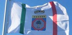 bandiera ufficiale Regione (albero d'olivo in campo d'argento)