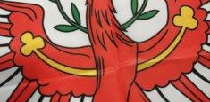 Dettaglio stampa sublimatica bandiera Tirolo