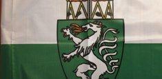 Dettaglio stampa sublimatica bandiera Stiria