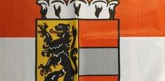 Dettaglio stampa sublimatica bandiera Salisburghese