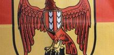 Dettaglio stampa sublimatica bandiera Burgenland