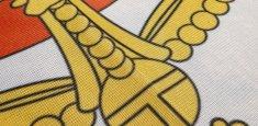 Dettaglio stampa sublimatica bandiera Italia Savoia