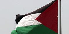 Bandiera della Palestina in applicazione