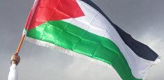 Vessillo palestinese con frangia bianca